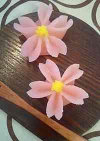 Elegant Japanese Sweets (Jo-Namagashi) for Spring
