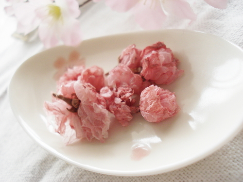 Salt-Cured Cherry Blossoms