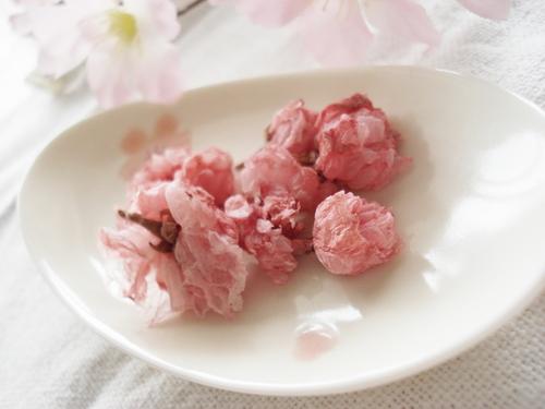 Salt-Cured Cherry Blossoms
