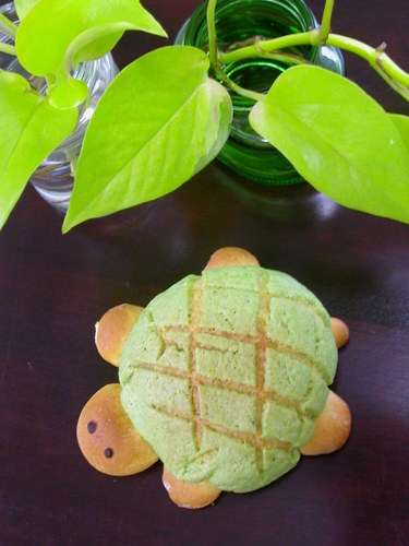 Turtle-Shaped Melon Bread in the Microwave