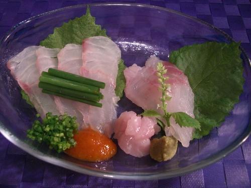 Red Grouper Sashimi