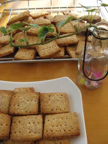 Good for the Body! Macrobiotic Graham Crackers