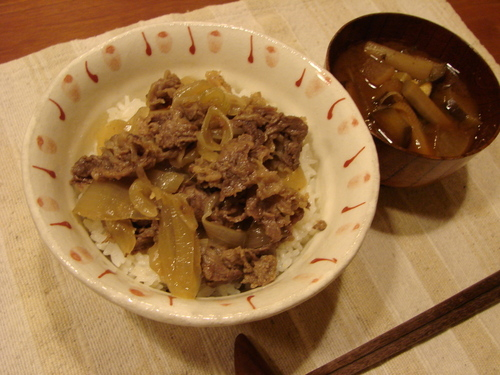 Tender Simmered Beef Rice Bowl