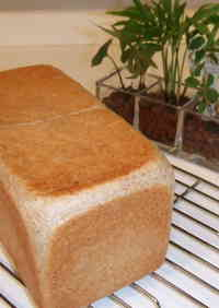 Whole Wheat Square Loaf - Perfect for Sandwiches