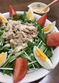 Mizuna and Tuna Salad