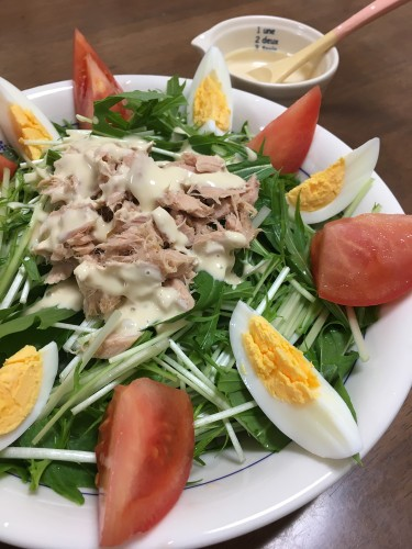 Mizuna and Tuna Salad