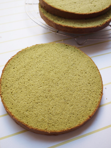 Moist & Light Matcha Sponge Cake