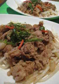 Pork and Ginger Stir Fry with Bean Sprouts and Garlic