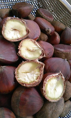 How to Make Delicious Boiled Chestnuts