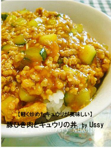 Ground Pork and Cucumber Rice Bowl