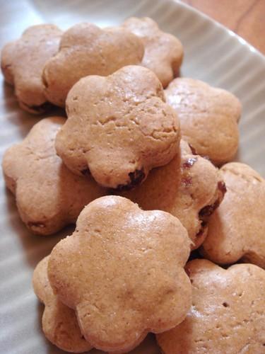 Kinako and Raisin Cookies