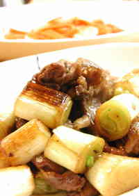 Beef and Green Onions