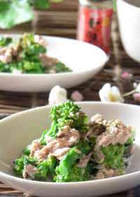 Nanohana in Tuna-Mayonnaise