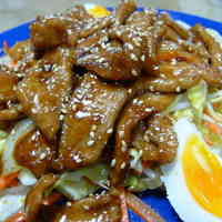Hearty Sautéed Pork with Sauce