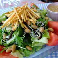 """""""Magowa-yasashii"""" Salad"""
