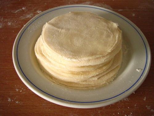 Easy Homemade! Gyoza Dumpling Skins
