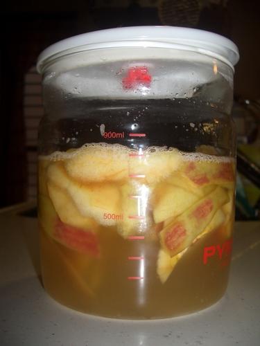 Homemade Apple Yeast