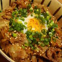 Hearty Pork and Burdock Rice Bowl
