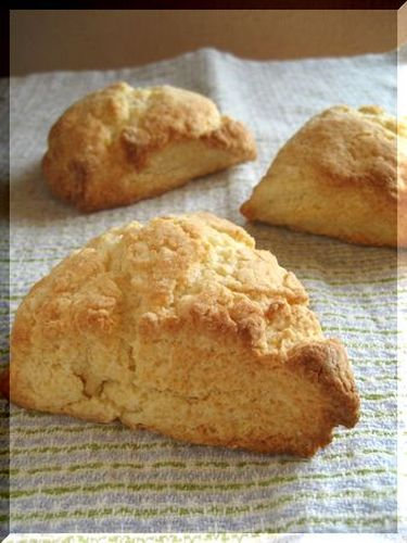 Easy Hot Biscuits