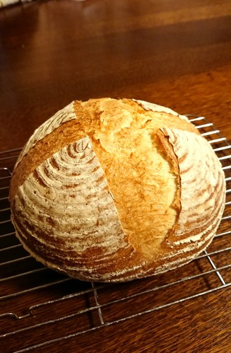 Pain de Campagne -- Rustic Bread