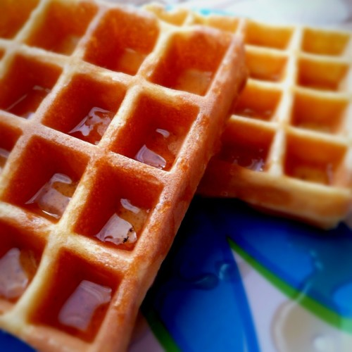 Waffles With One Egg