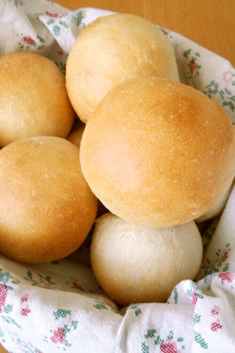 Moist and Chewy Dinner Rolls