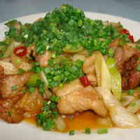 Pork Roast and Green Onion Sweet and Spicy Stir-Fry! Great with Beer