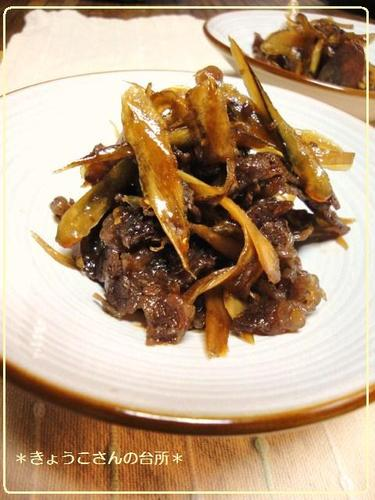 Simmered Beef and Burdock Root