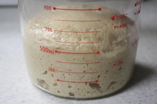 Homemade Yeast (Bread Starter)