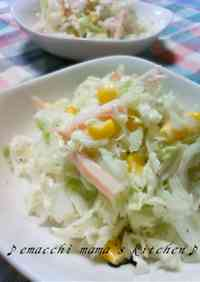 Refreshing Chinese Cabbage Cole Slaw